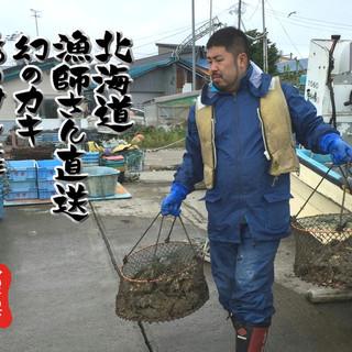 漁師直営=鮮度抜群!低価格!