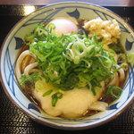 丸亀製麺 - とろ玉うどん(並)冷 @380