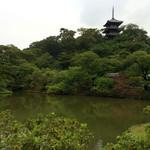 山本 - 雨の三渓園