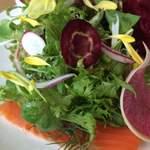 ワイエスシー スペースアンドカフェ ヨコハマ - 7種類以上の野菜に、食べられる花を散らせて。