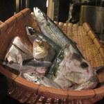 銀平 - 煮魚の「顔見せ」