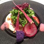 アッシュカー - イナダのカルパッチョ、紫キャベツのグレック、ディルのマヨネーズソース