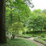 日光田母沢御用邸記念公園 - 庭園