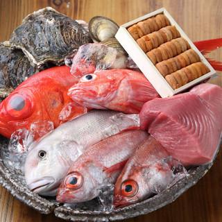 日替わり!季節ごとの漁港直送の新鮮な魚介類を食べたいならここ