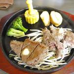 まんぷくステーキ&ハンバーグ ニクカ - 「ステーキ食べくらべコンビ」の「赤身肉ランプ100gと濃厚カルビ100g」