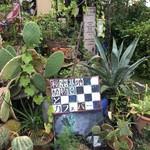 秘密基地植物園   -