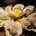 56586810 - 生牡蠣(岩手の大槌、北海道の厚岸、北海道の仙鳳祉産)
