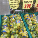 生鮮食品 ファスト長篠 - 極早生ミカン398円を。