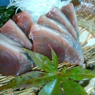 伊良湖岬から魚を直送!