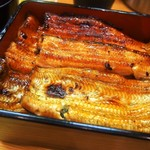 うなぎ料理 よね山 - 鰻重(特上)