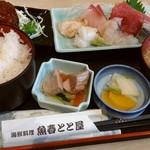 海鮮料理魚春とと屋 - お刺身定食Aランチ1000円税込