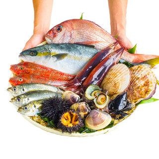 毎日漁港から直接仕入れています!旬のプリプリ鮮魚たち!