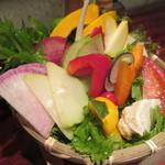 どろまみれ - 名物!!15種生野菜盛り