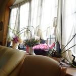 大きな銀杏の木 - 店内(窓際)