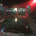 恵那ラヂウム温泉館 - 温泉(誰もいなかったのを見計らって)
