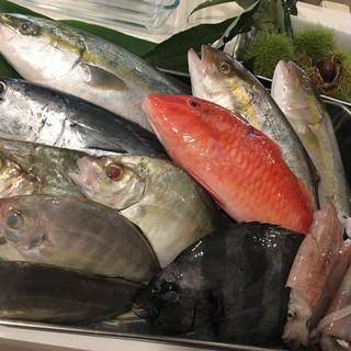 高知県宿毛港直送の新鮮なお魚‼︎