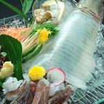 暖 - 料理写真:三崎直送!泳ぎ活いか姿造りは肝やゲソも食べられます!