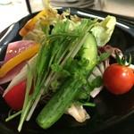 キッチンステージ - 20種のサラダ