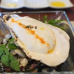 ビストロ ダイア - 北海道釧路産仙鳳趾 牡蠣の冷製 レモンとココナッツのエスプーマ