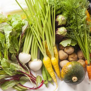 産地直送の野菜を取り入れた健康的スタイルは女性に大人気