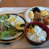ホテルシーガルてんぽーざん大阪 - 料理写真:和洋種類が豊富です。