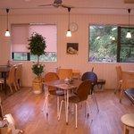 カフェ ビィエント - とても明るい店内です。席数は20席ほど。ゆったりした雰囲気があります。