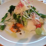 SOGNO - シャキシャキお野菜のサラダ