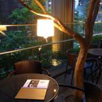 東京ビアホール&ビアテラス14 - 緑とライトが素敵なテラス席