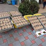 ヤマワカ水産 - 料理写真: