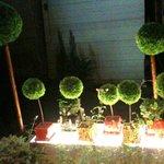 サマサマ - '10・08・06 夜の中庭