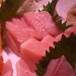 魚孝 - 料理写真:本まぐろのトロ