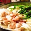 おやじダイニング 風土. - 料理写真:博多 塩もつ鍋 1人前/札幌で人気の九州料理居酒屋