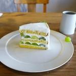 57513889 - シャインマスカットのショートケーキ