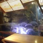 日本大漁物語 きじま 大船店 - いけす