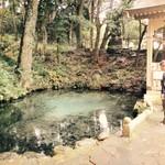 57551590 - 泉神社の湧き水