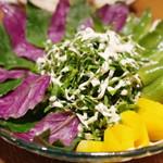 我如古 - 島野菜のサラダ