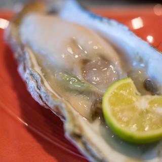 大寿司 - 料理写真:蝦夷地(えぞち)昆布森(こんぶもり)の眞牡蠣(まがき)