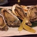 57727846 - プリプリの牡蠣