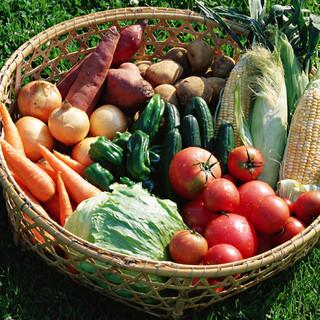 厳選された神戸の地野菜とのコラボレーション