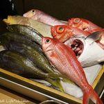 57757489 - 浜直!淡路島鮮魚のざる見せ 16.10月