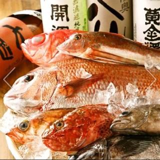 仲卸直営ならではのこだわり鮮魚