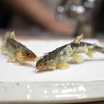 天ぷら 蕎楽亭 - 料理写真:稚鮎