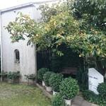 パシモン - 入口に立派な柿の木があります