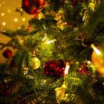 【12/15~25】フェスティブ・クリスマス ランチフルブッフェ