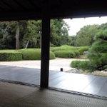 5791547 - こんなに素敵な庭を眺めながらお茶をいただきます