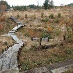 何時も庵 - 箱ノ森散歩道 時には里山の風景と山野草を楽しみながら「883歩」歩いてみませんか