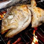 栄鮓 - 当店の名物料理『魚のカマ塩焼』数量限定なんと!590円