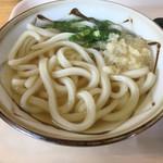 やまびこ屋 - 料理写真:かけうどんとお弁当のセット(*´д`*)500円
