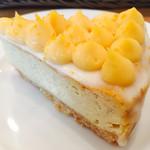 58204101 - パンプルムースのチーズケーキ