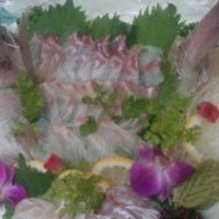 お祝いでのご予約で鯛姿焼又は鯛姿造りプレゼント!!